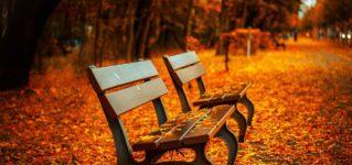 Pronto viene el otoño