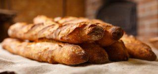 ¿Qué te gusta más el pan o el arroz?