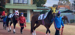 Carreras de caballos en Nagoya