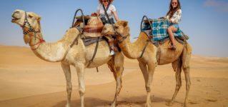 Montar en un camello