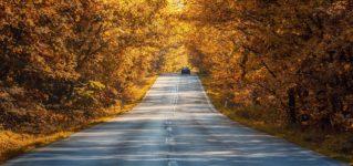 Termina el verano, empieza el otoño