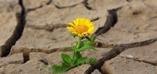 スペインの風景と土壌劣化