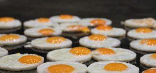 ¿Comes con frecuencia huevos fritos?