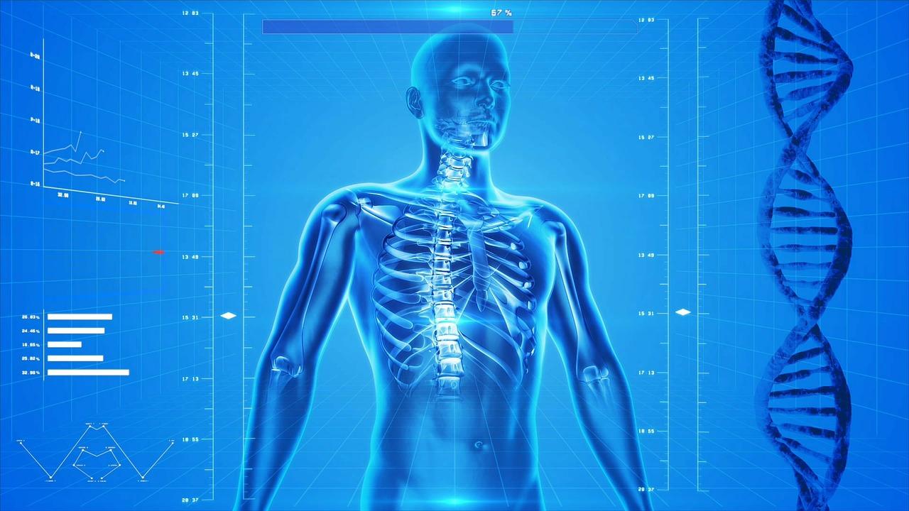 身体の知識ベスト25