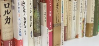 Libros en ADELANTE