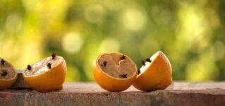 Limón con clavos