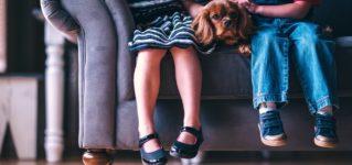 Perros con niños