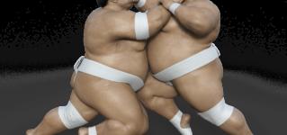 El sumo, deporte nacional de Japón