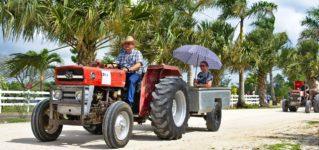 Quiero dar un paseo en tractor