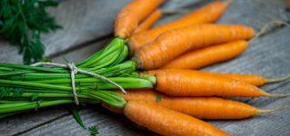 Zanahorias para hacer zumo